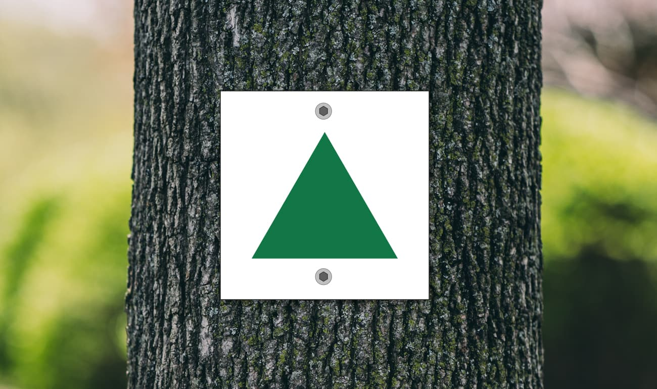 weißes Quadrat mit grünem Dreieck auf Baumstamm
